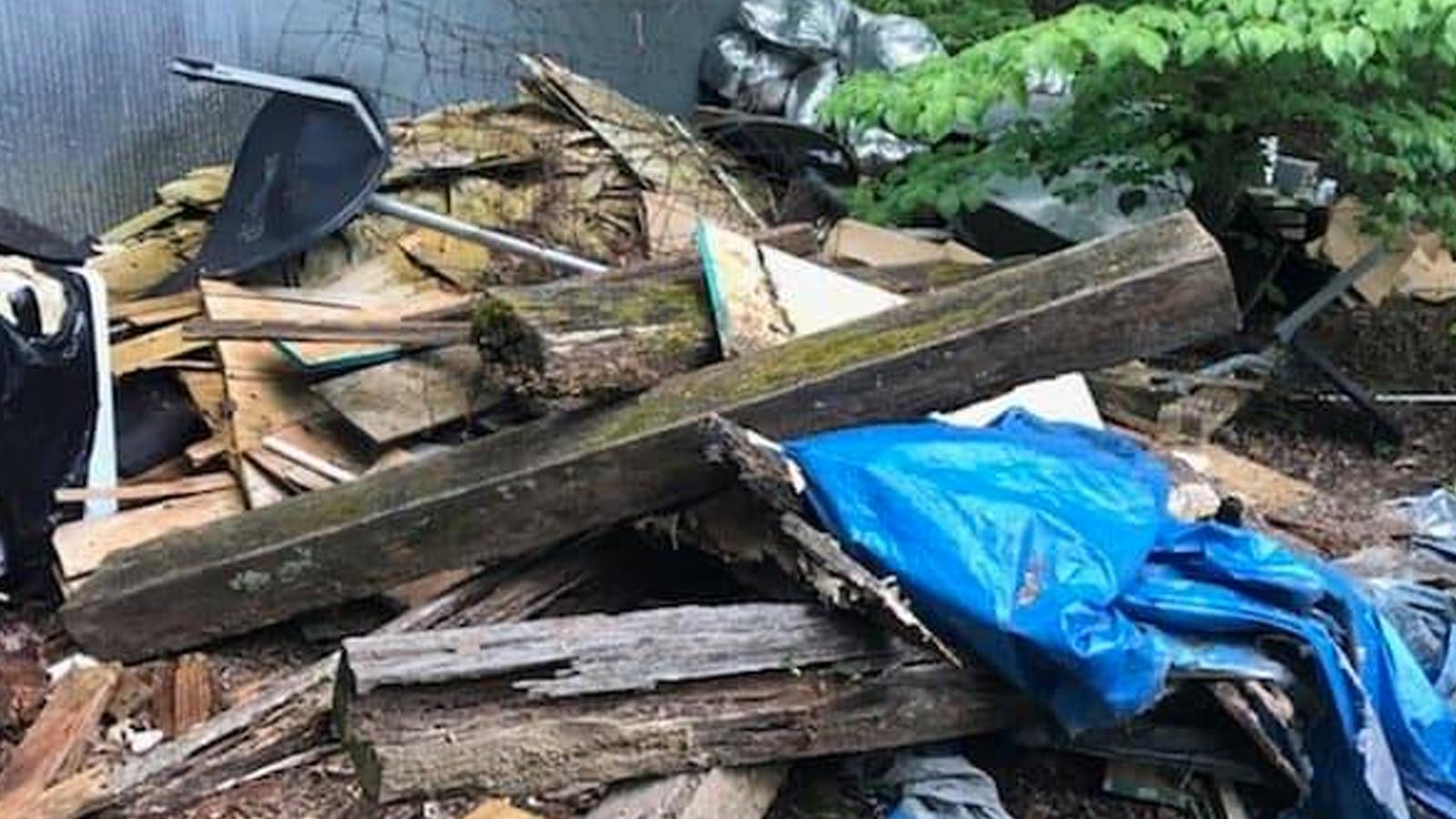 pile of old log